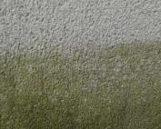 stucwerk reinigen